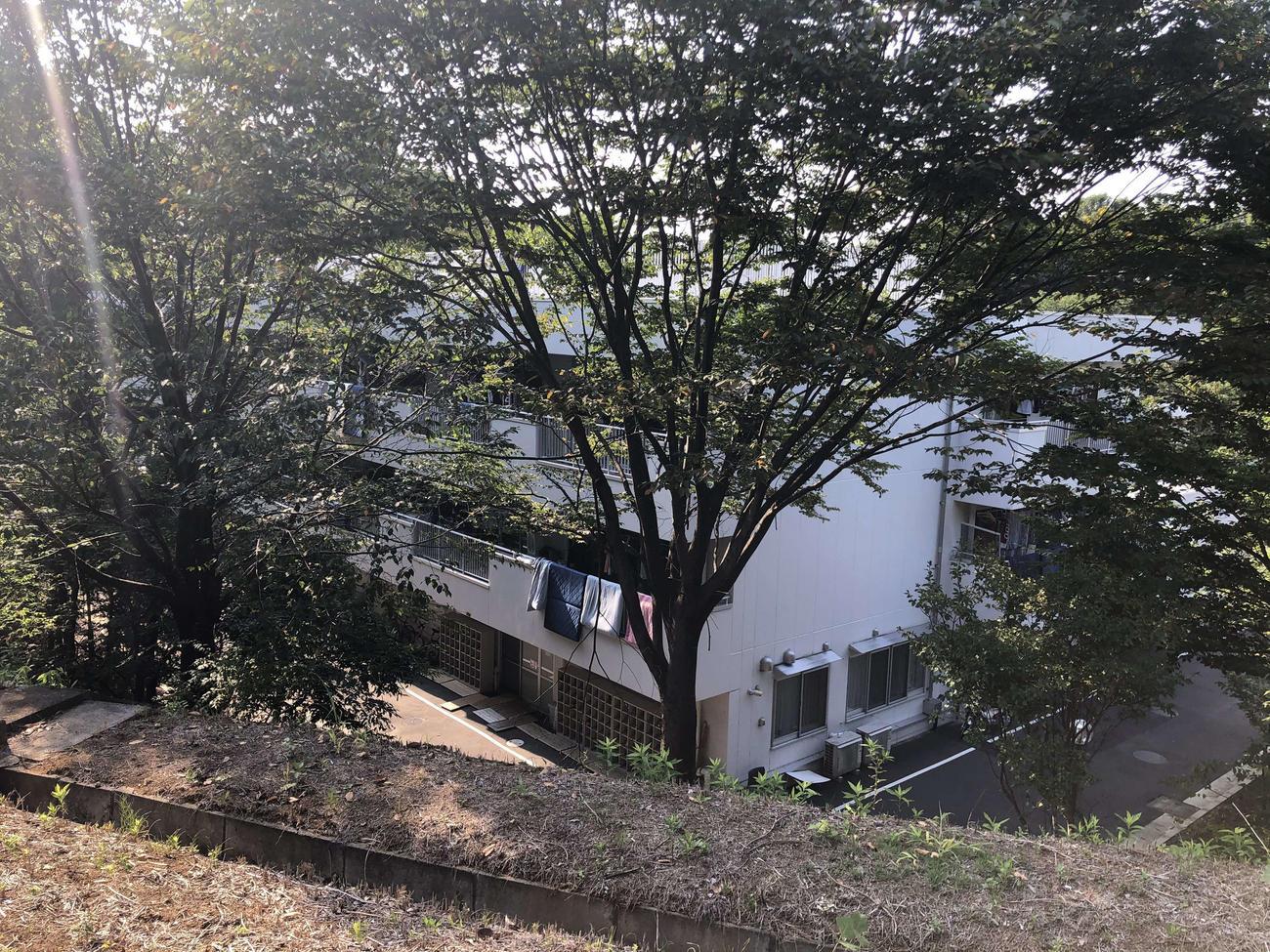 元ヘッドコーチの40代男性による部員への暴行問題発覚から一夜明けた東京・稲城市の日大ラグビー部寮