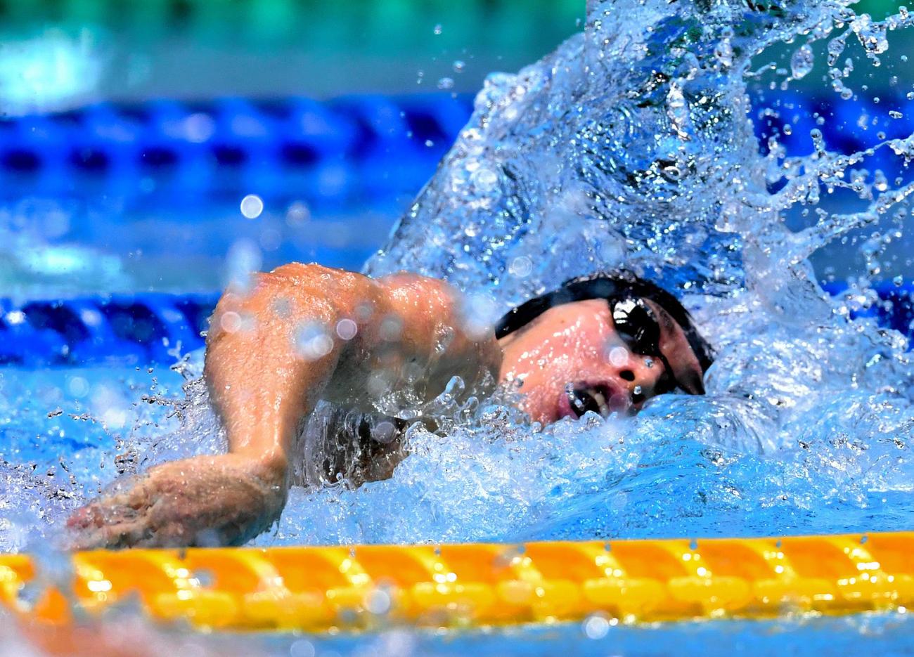 男子200メートル個人メドレーで1位になった萩野公介(代表撮影)