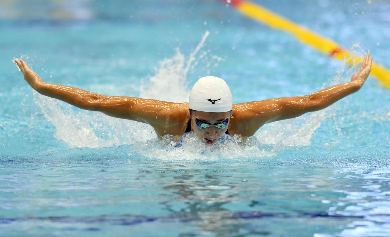 競泳W杯東京大会 3日目 女子100メートルバタフライ 予選で力泳する池江璃花子(2018年11月11日撮影)