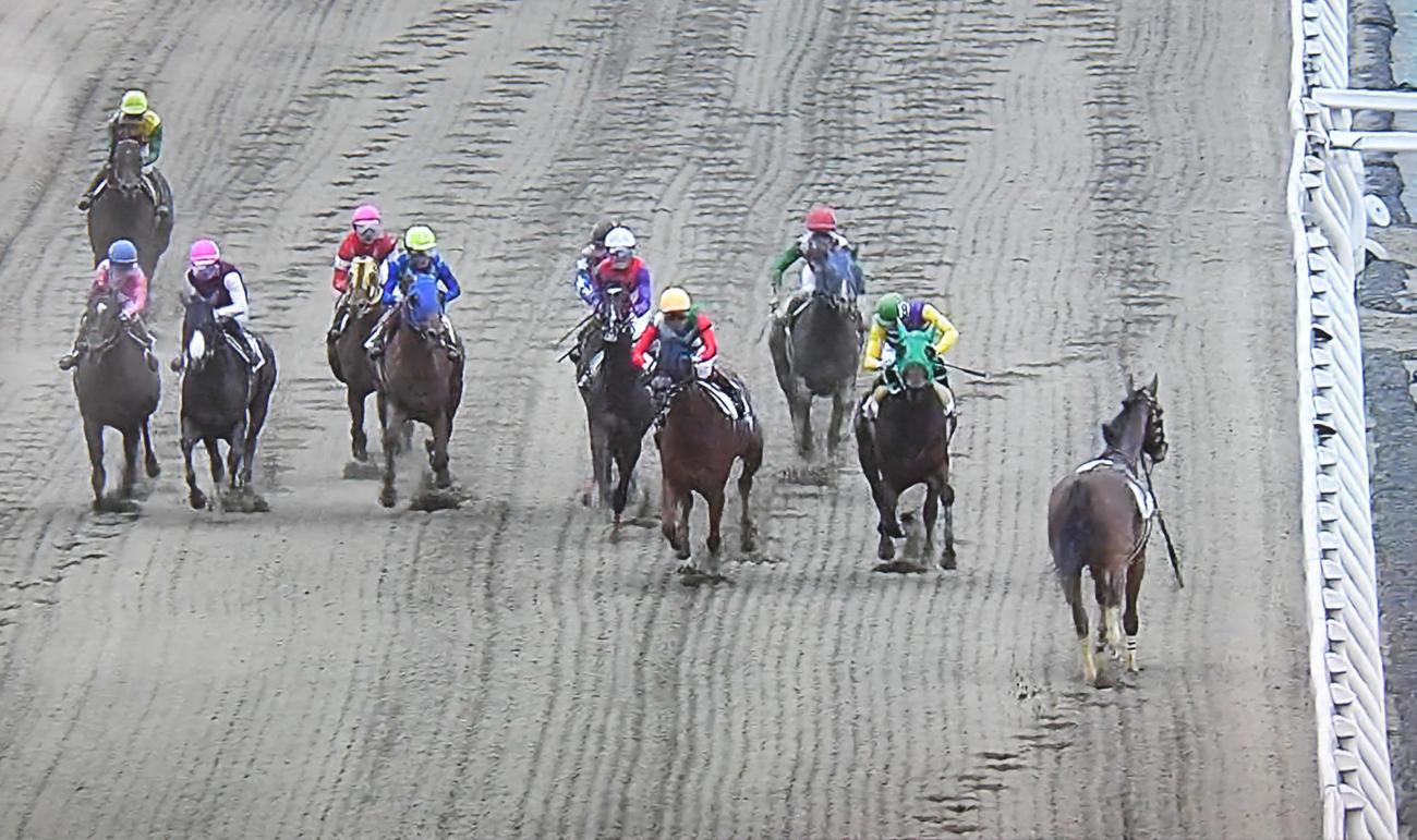 船橋競馬8R、マラニーノ(右)は落馬して騎手を振り落として逆走(パトロールビデオから)