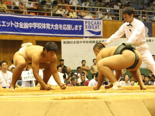 相撲の全国大会で活躍する具智元(左)